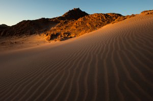 Sinai ørkenen