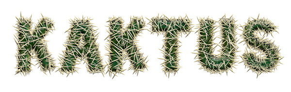 kaktus-small