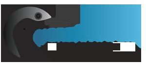 logo_nnpc