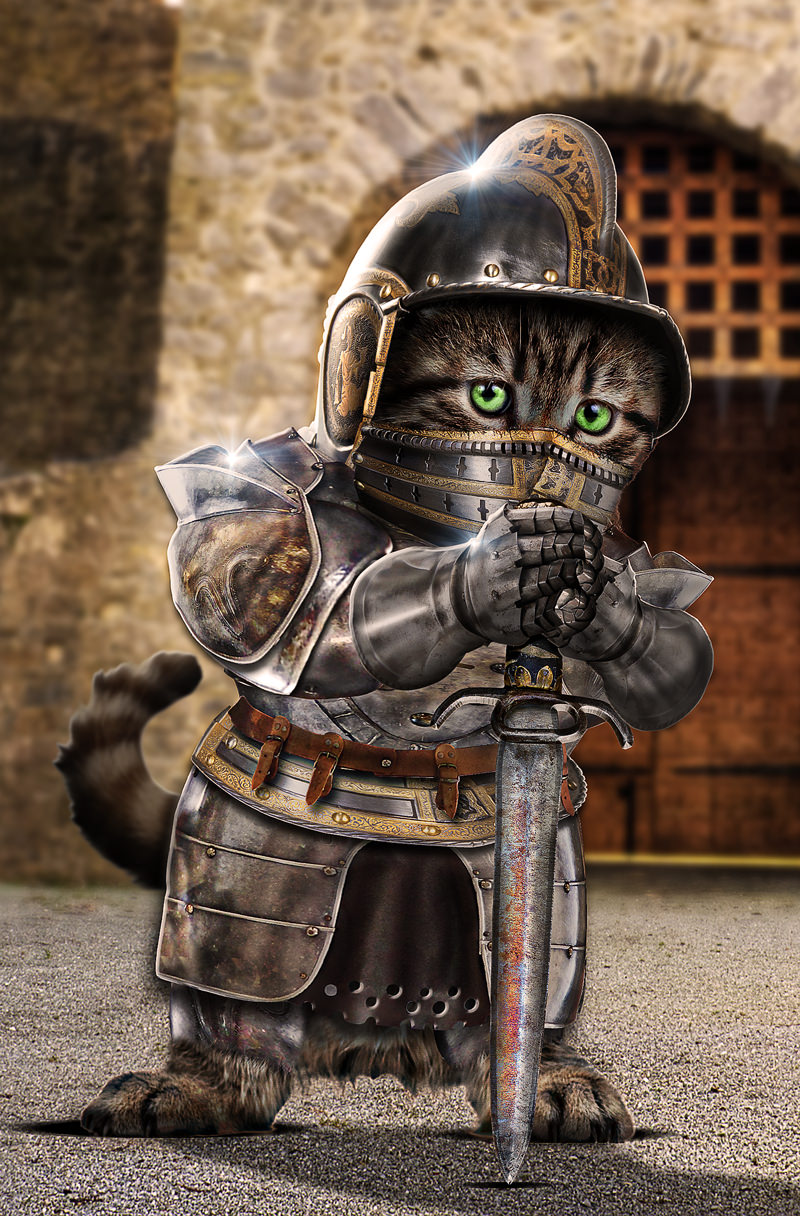 Kitty-The-Knight