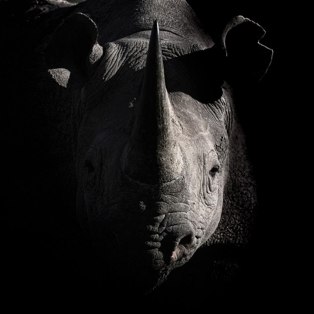 Karoo NP