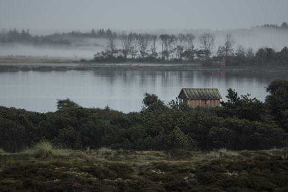 T-Dag – Keld Skytte Petersen – Når naturen kalder